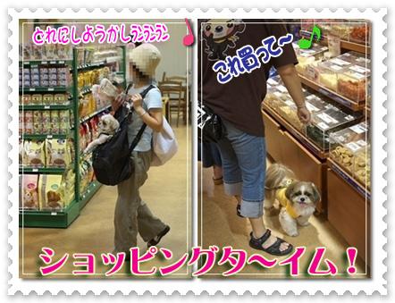 ショッピングターイム!