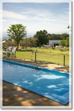 小型犬専用プール